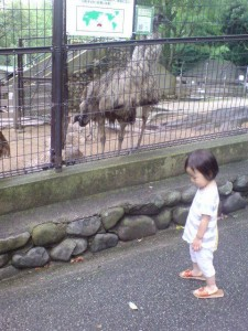 satsukiyamazoo